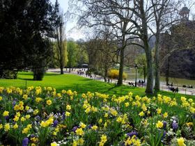 Jardin-paris.jpg